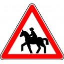 Passage de chevaux...Classe 1 Triangle 500mm